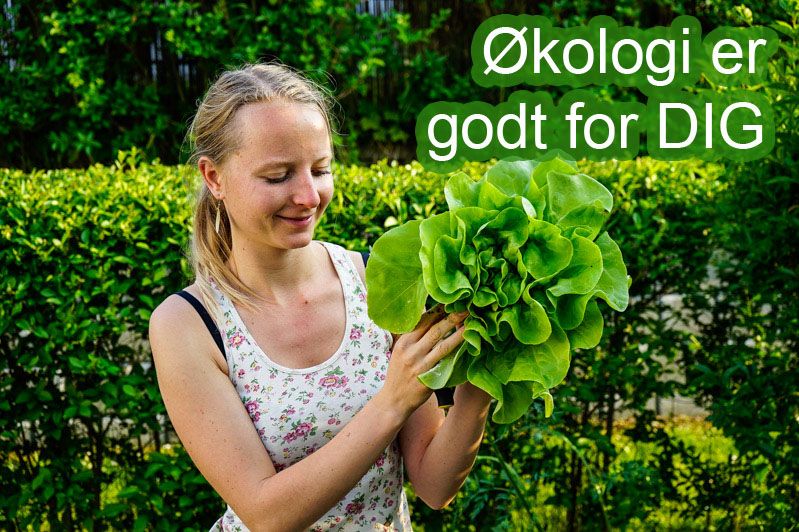 Økologi er godt for dig