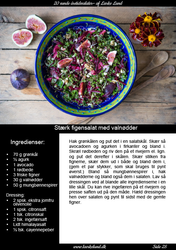 ny-e-bog-med-sunde-salater